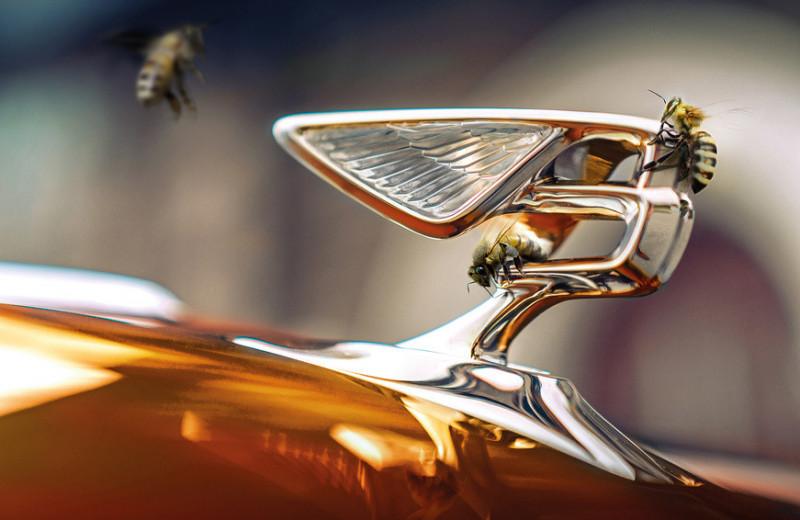 Замкнутый цикл: как создают современные автомобили Bentley