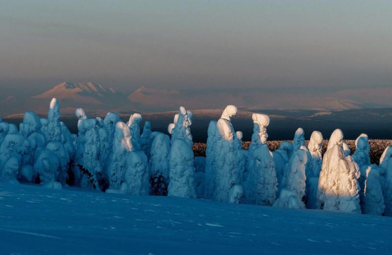 Коми: край зимней сказки