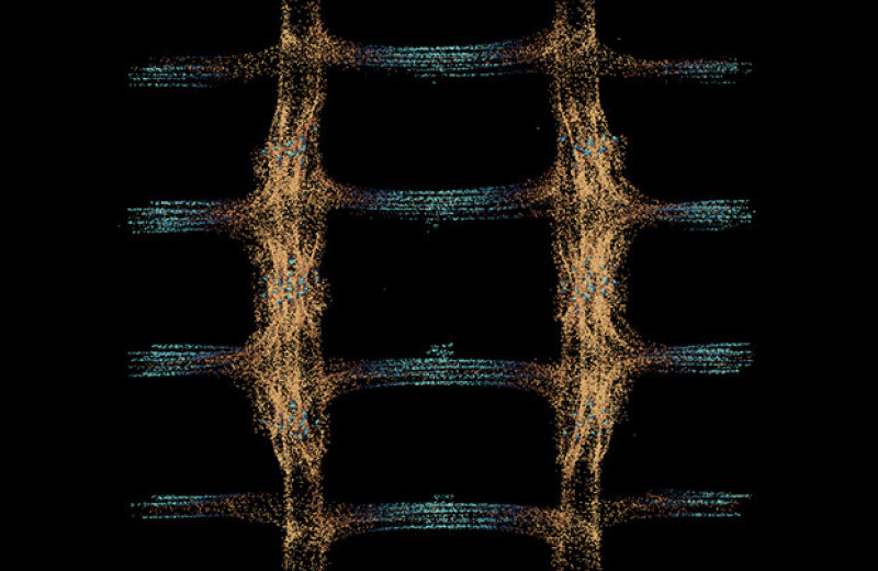 Квантовый вычислитель смог обнаружить фазовый переход сквозь шум