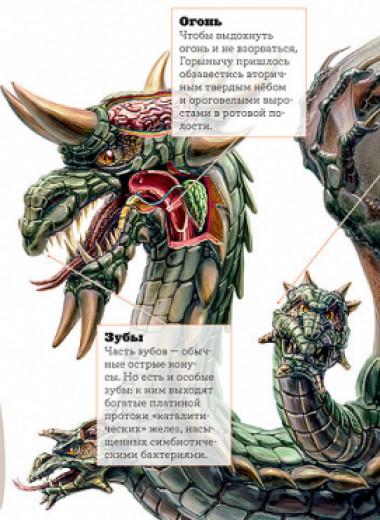 Змей Горыныч: подсчет поголовья