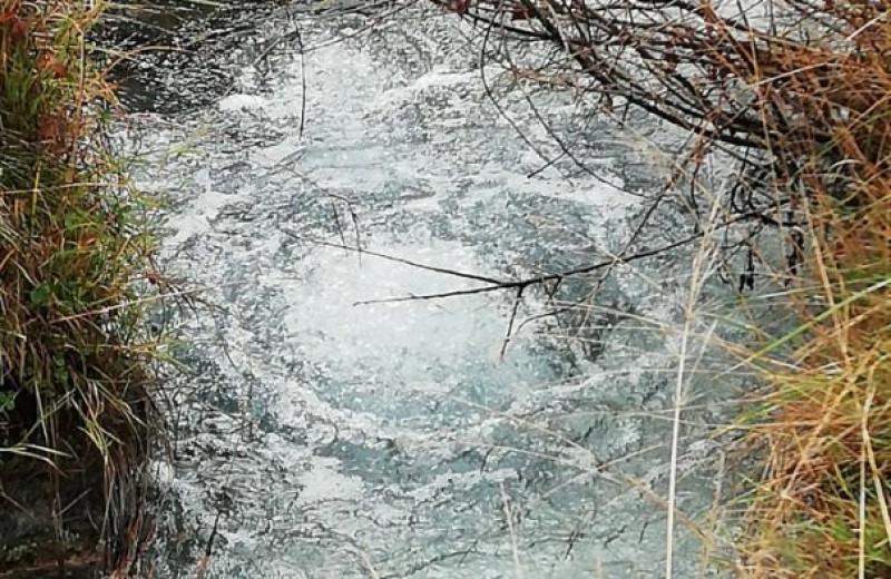 Землетрясения в Италии связали с выбросами углекислого газа из подземных источников