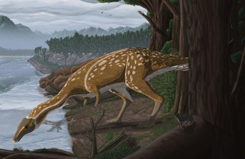 Кузена T. rex с длинной шеей обнаружили в Австралии