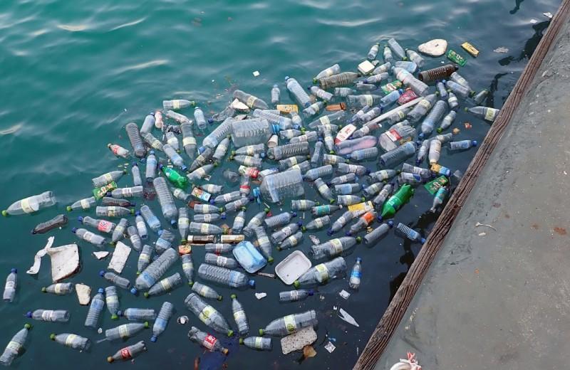 Пластиковый мусор достиг Марианской впадины