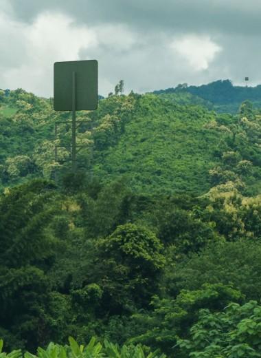 В Новой Зеландии протестируют первую коммерческую систему беспроводной передачи энергии