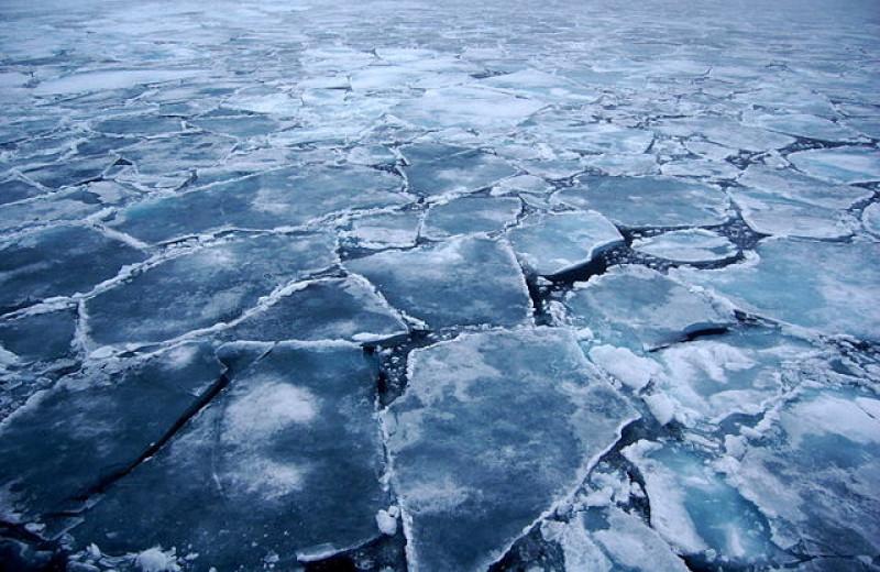 Лед тронулся: чем грозят изменения климата в Арктике
