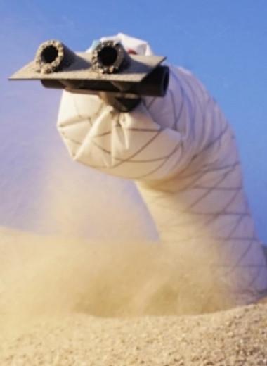 В США создали робота-червя. Он может передвигаться в песке и мягкой почве
