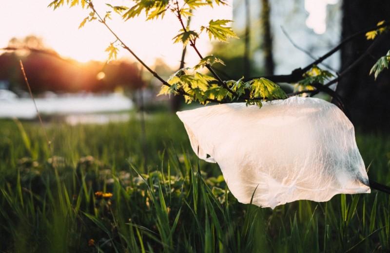 35 стран, отказавшихся от пластика и полиэтилена (Россия, пора просыпаться)