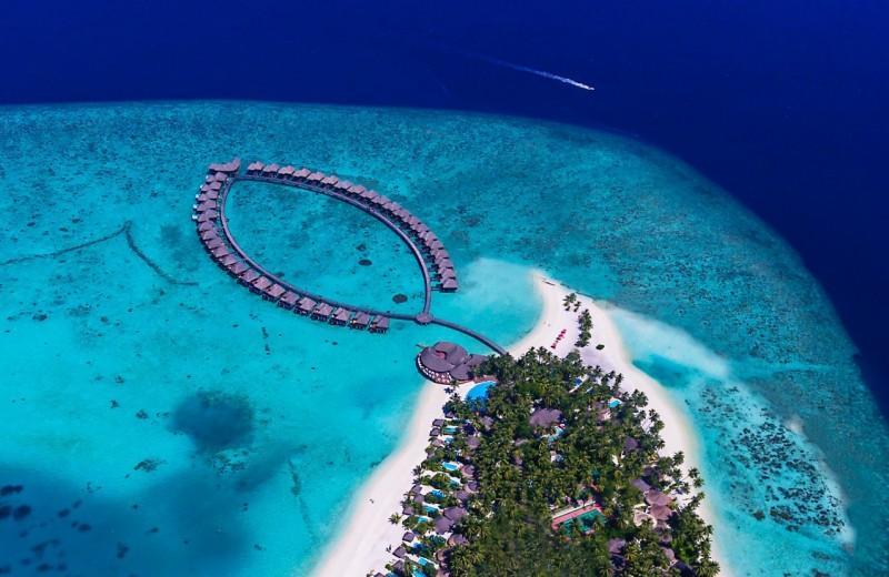 Чем заняться на Мальдивах: 2 идеи от Sun Aqua Vilu Reef