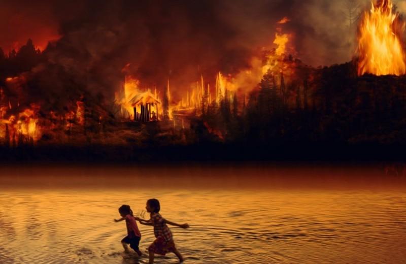 «Легкие» планеты охвачены огнем: так ли это на самом деле