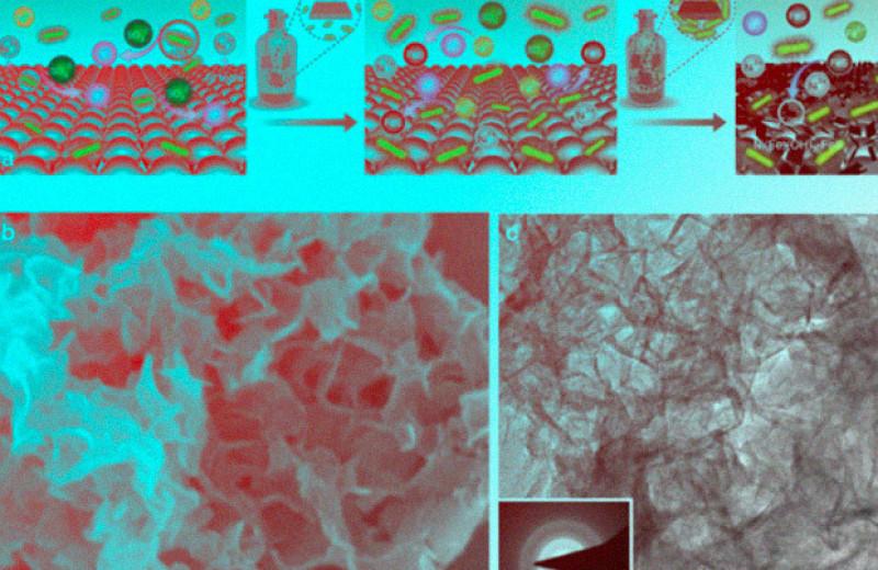 Бактерии помогли получить катализатор для электролиза воды