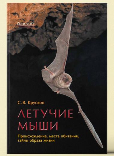 «Летучие мыши: Происхождение, места обитания, тайны образа жизни»