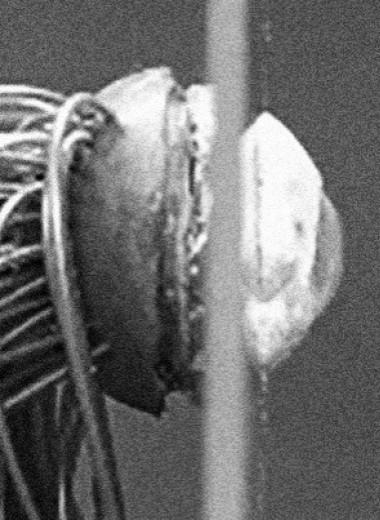 Материаловеды сделали электрохимический глаз с сетчаткой из нанонитей перовскита