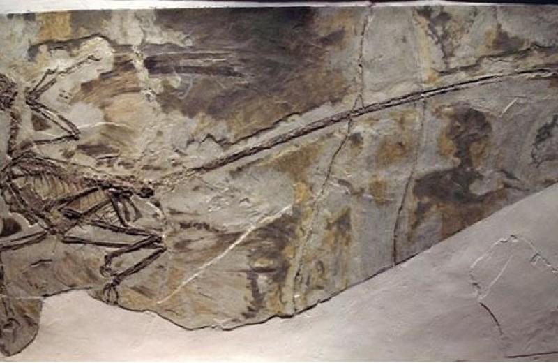Четыре археологические фальсификации