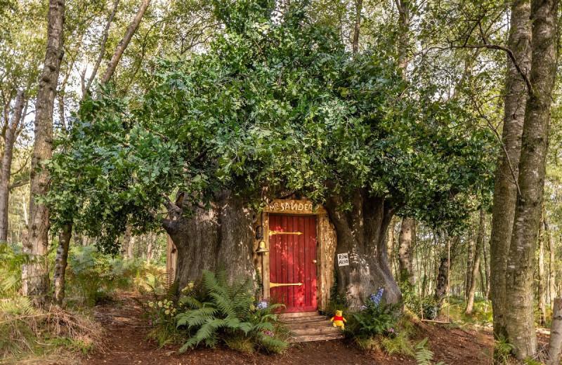 В Британии можно пожить в домике Винни-Пуха