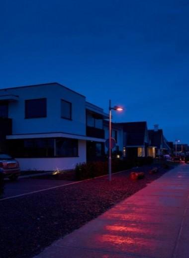 Cпециальное освещение для летучих мышей: опыт Голландии
