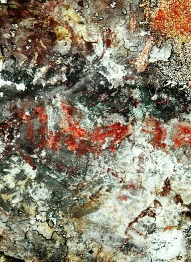 В Карелии нашли петроглифы из охры. Им более 5 тысяч лет