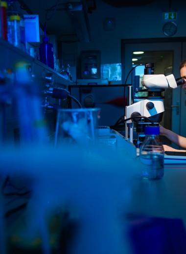 Золото помогает изменить гены человека
