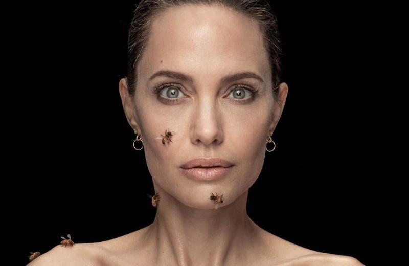Анджелина Джоли: новая союзница пчел – и женщин-пчеловодов