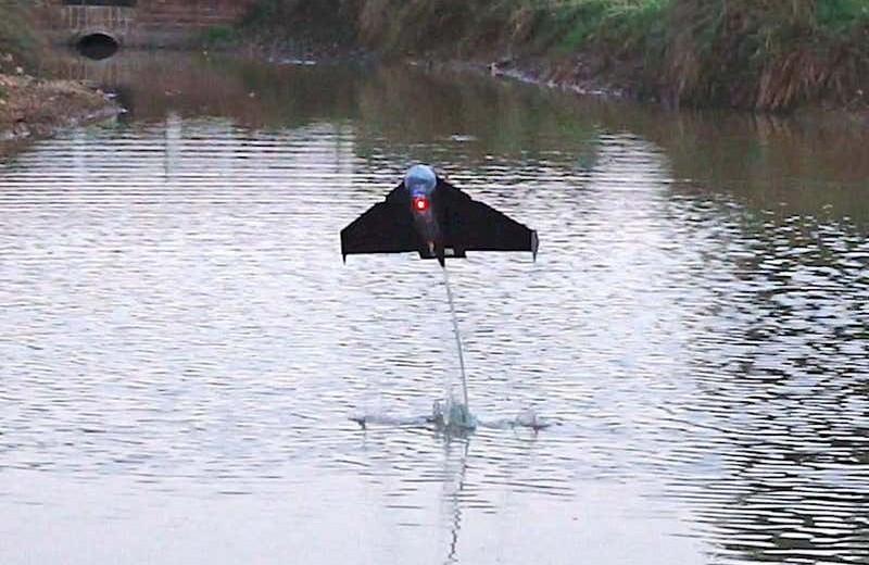 Для чего изобрели робота-«летучую рыбу»: видео
