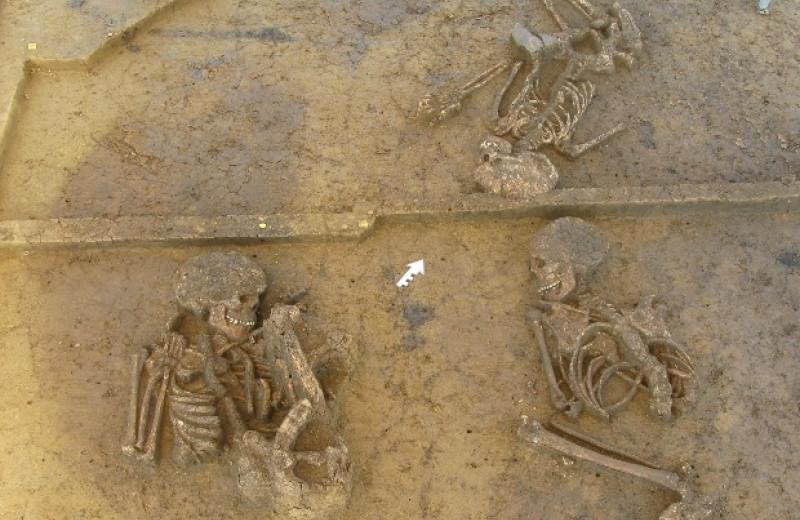 Древних жителей Германии похоронили 6000 лет назад без учета социального статуса
