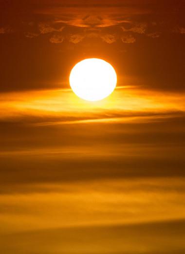Бег Элагабала: отрывок из нового романа Виктора Пелевина «Непобедимое солнце»