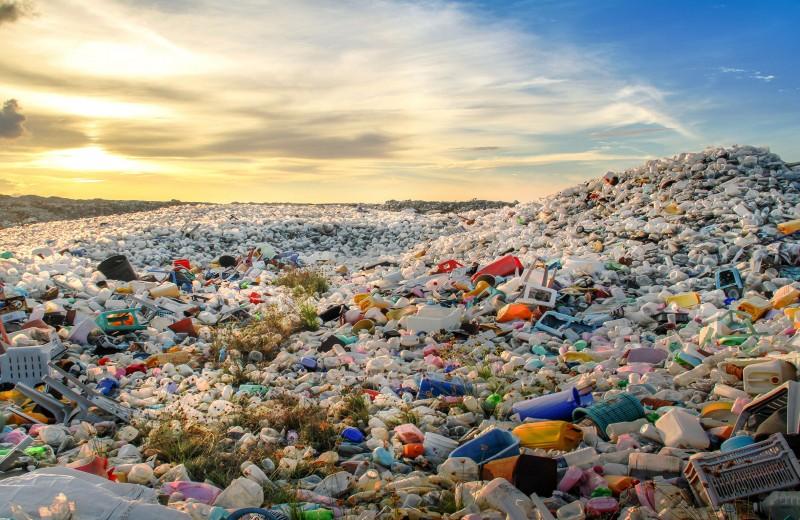 Нейросеть научилась сортировать пластиковый мусор