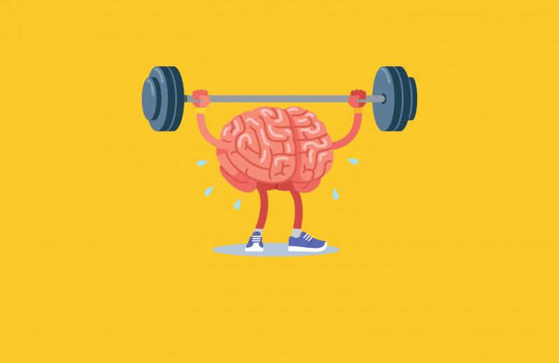Чтотакое нейрофитнес и почему важно тренировать мозги