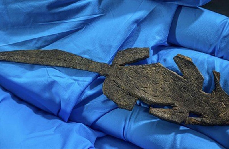 «Древнеримский пранк»: в военном поселении I века до нашей эры нашли игрушечную кожаную мышь