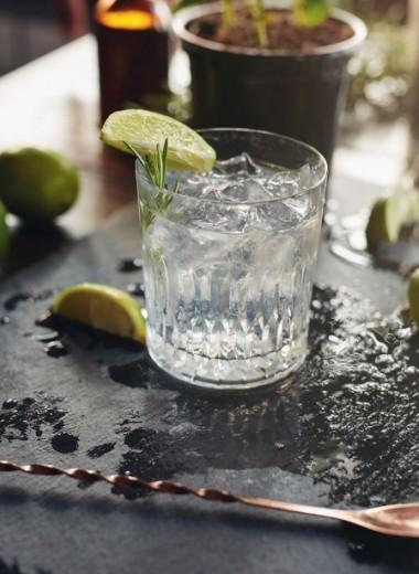 Как правильно пить джин: самые интересные способы и идеальная закуска