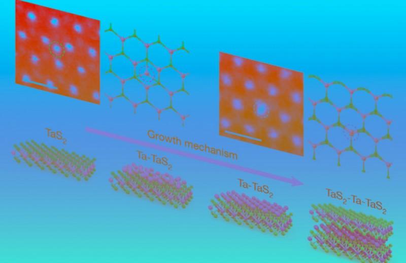 Двумерный парамагнетик стал двухслойным ферромагнетиком