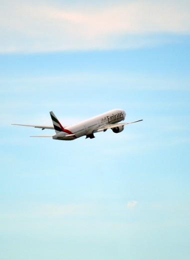 Сотне пассажиров стало плохо на рейсе Дубай – Нью-Йорк