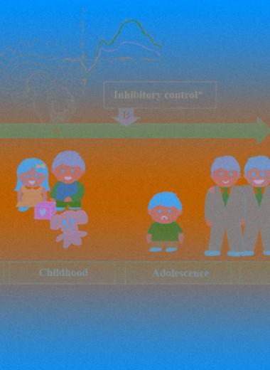 Застенчивость в раннем детстве повысила риск тревожных расстройств у взрослых