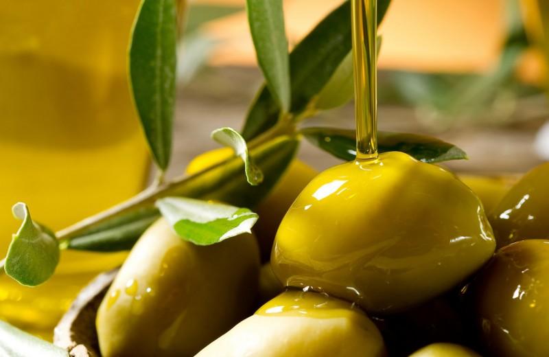 Какие бывают масла: гид по главному компоненту в кулинарии
