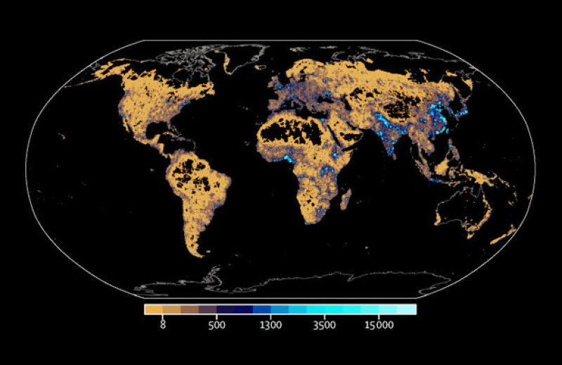 Пять миллионов ежегодных смертей за последние 20 лет связали с экстремальными температурами