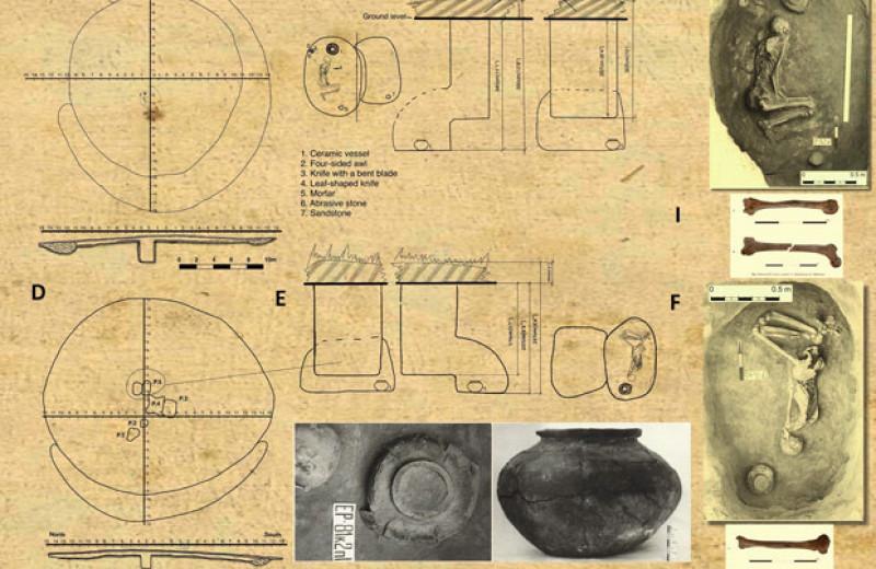 Палеогенетики секвенировали ДНК из курганов катакомбной культуры в Калмыкии