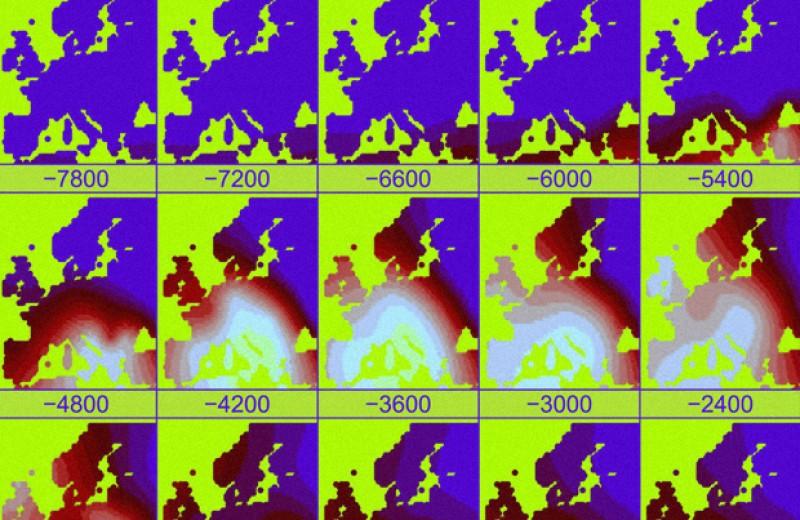 Обезлесение Европы связали с миграцией индоевропейцев