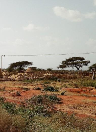 Одна вокруг света. Как спастись от дорожных мошенников в Эфиопии