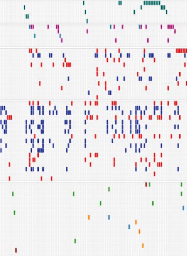 Рак легких у некурящих разделили на три подтипа по характеру мутаций