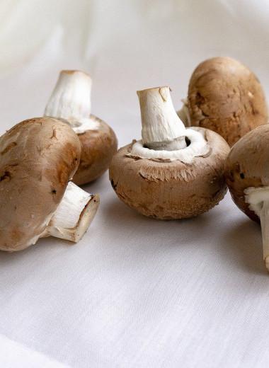 Если съедать один гриб в день, можно снизить риск возникновения рака