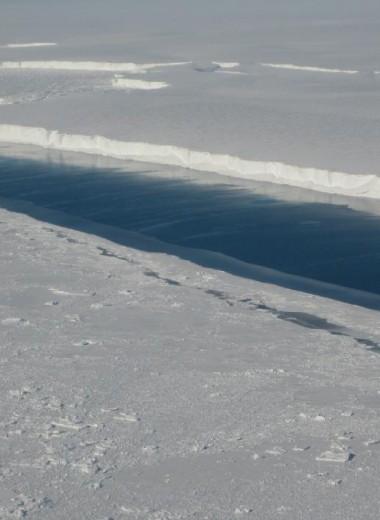 Айсберг размером с Санкт-Петербург откололся от антарктического ледника