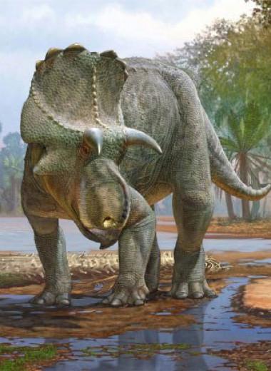 В Нью-Мексико обнаружили новый вид динозавров