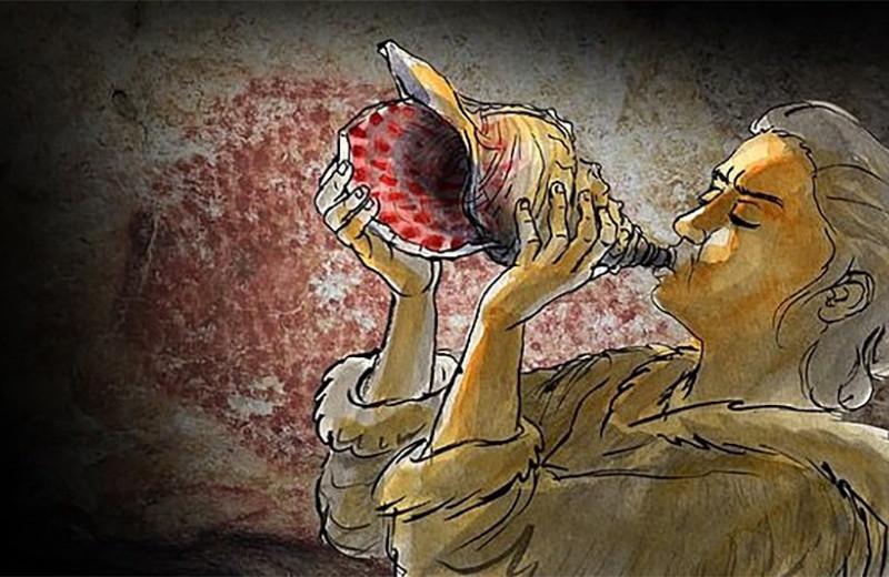 Древняя морская раковина оказалась духовым инструментом эпохи палеолита