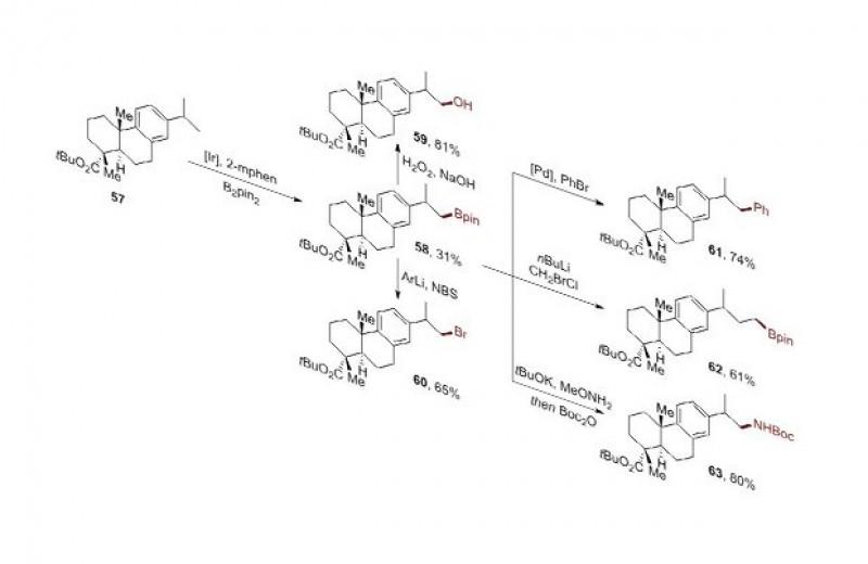 Химики научились селективно замещать водород на концевом углеводородном фрагменте