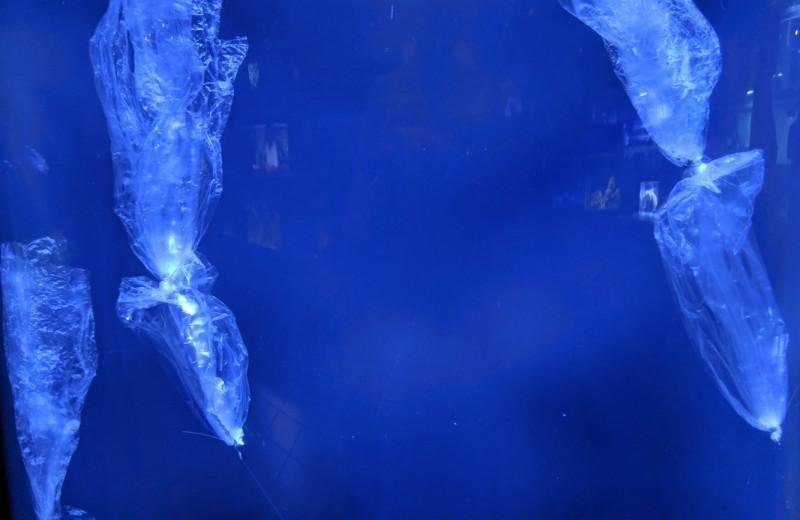 Океан может сохранять пластик без изменений более 24 лет