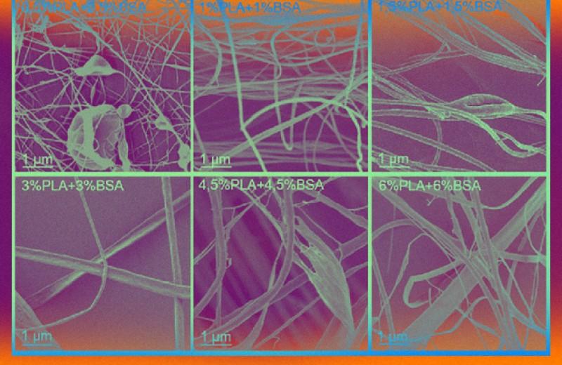Российские биофизики предложили получать полимерно-белковые полотна электропрядением