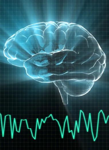 В мозгу человека найдены