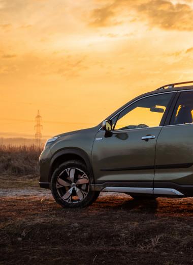 Subaru Forester— хищник средней полосы