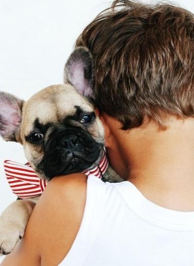 9 причин, почему твоему ребенку нужно домашнее животное