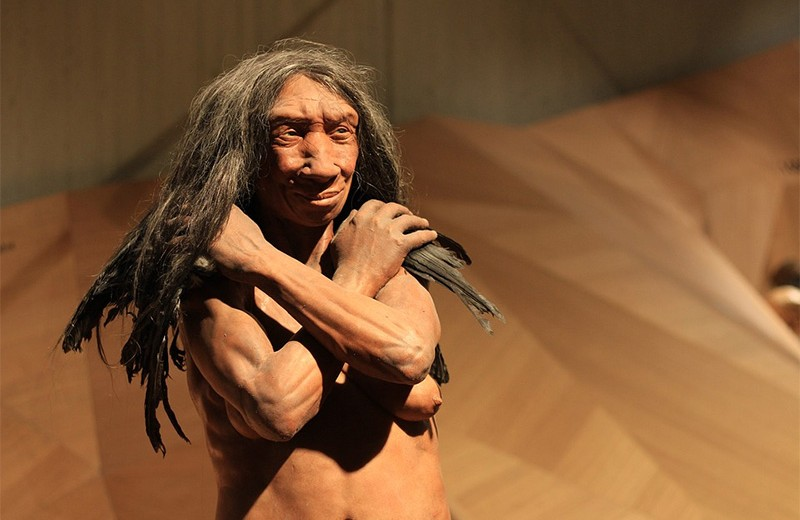 Неандертальцы вернули людям тысячи древних генов