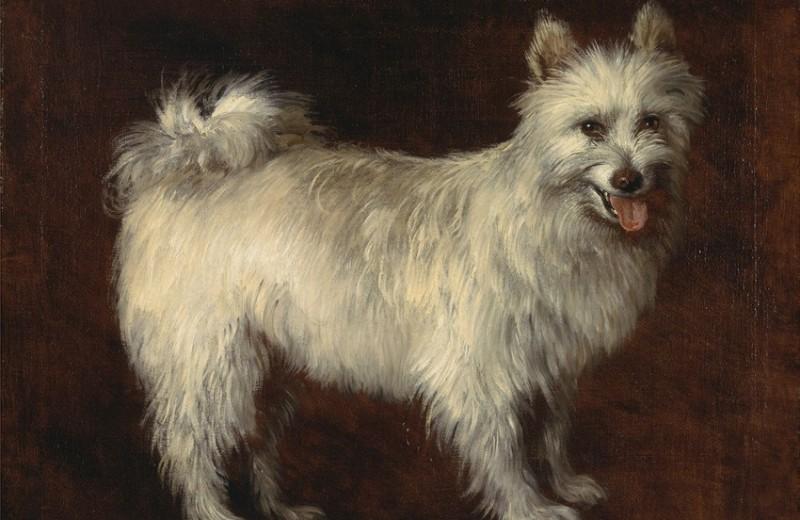 От Милушки до Чуни: русские литературные собачки